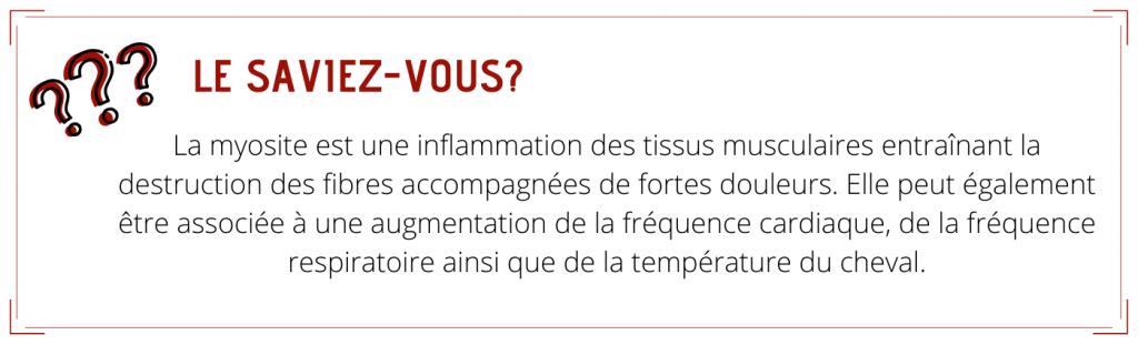 La myosite est une inflammation des tissus musculaires