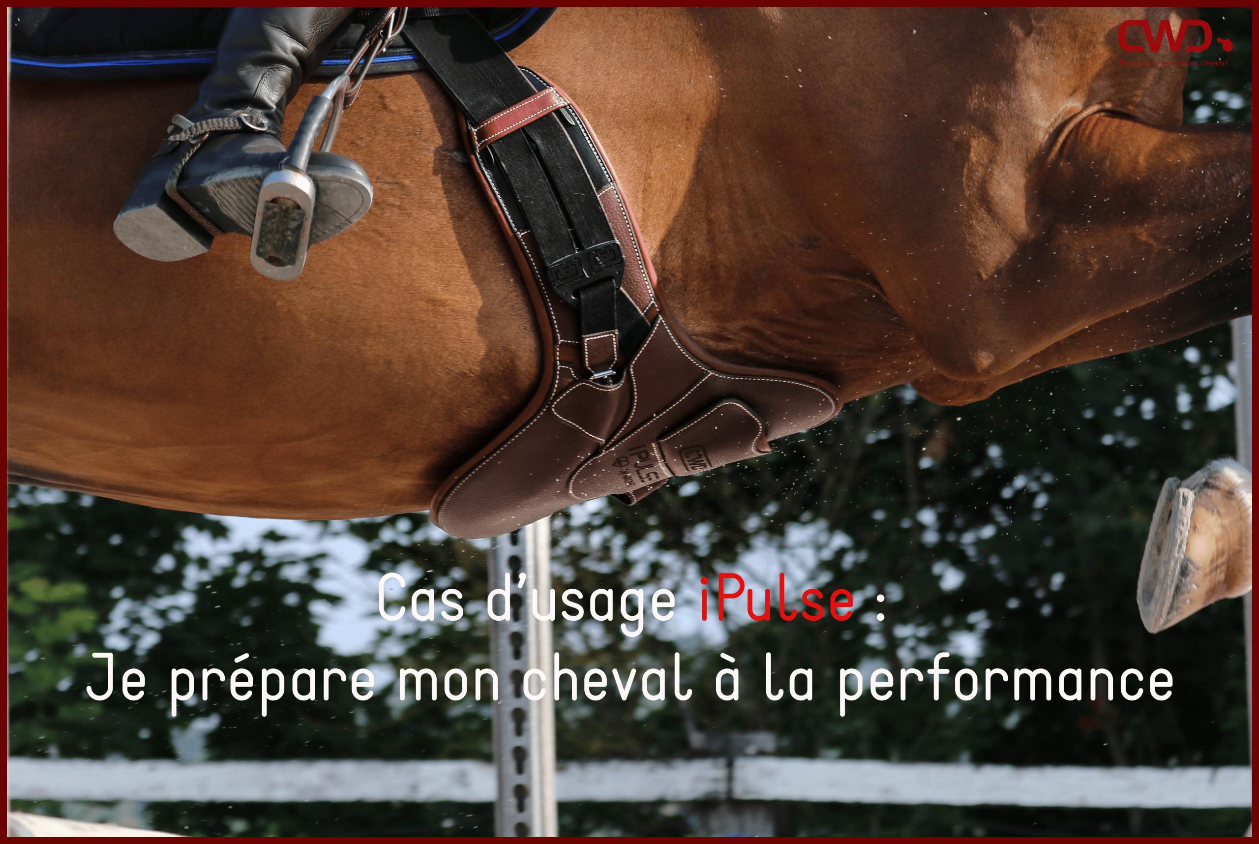 Je prépare mon cheval à la performance