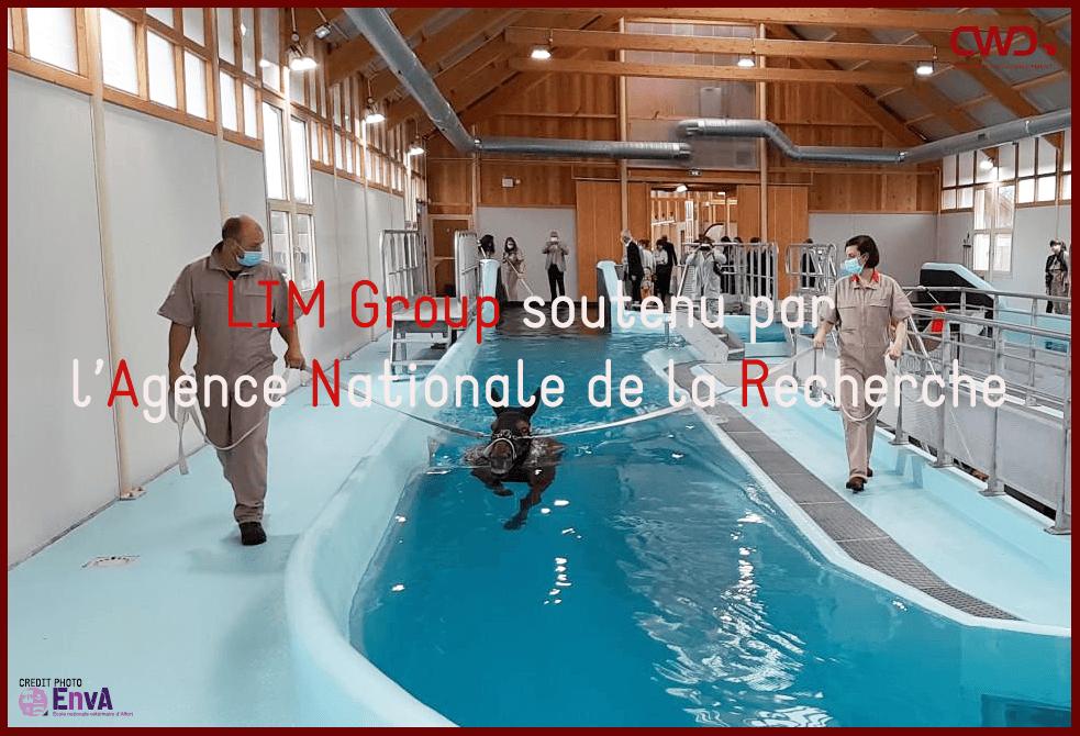 LIM Group soutenu par l'Agence Nationale de la Recherche