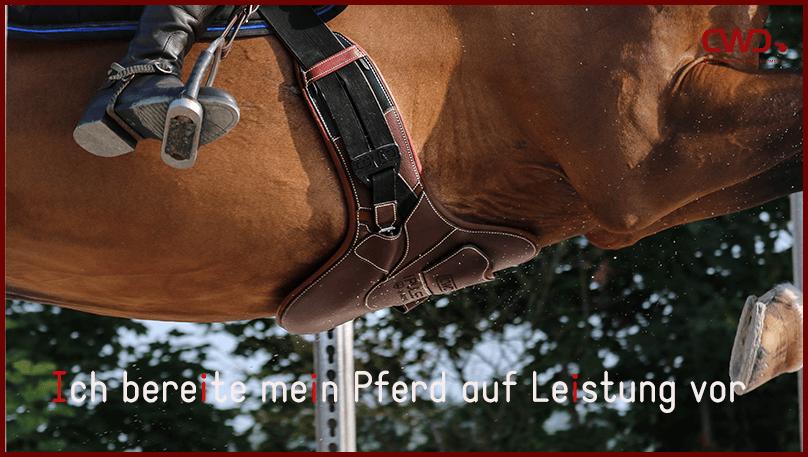 Ich bereite mein Pferd auf Leistung vor
