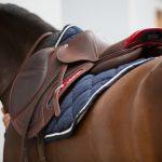 iJUMP saddle CWD on a horse