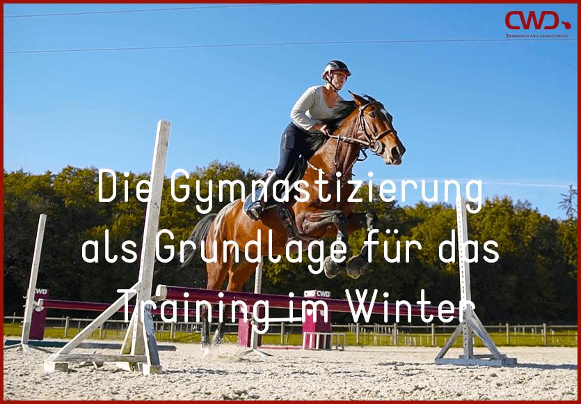 Die Gymnastizierung als Grundlage für das Training im Winter