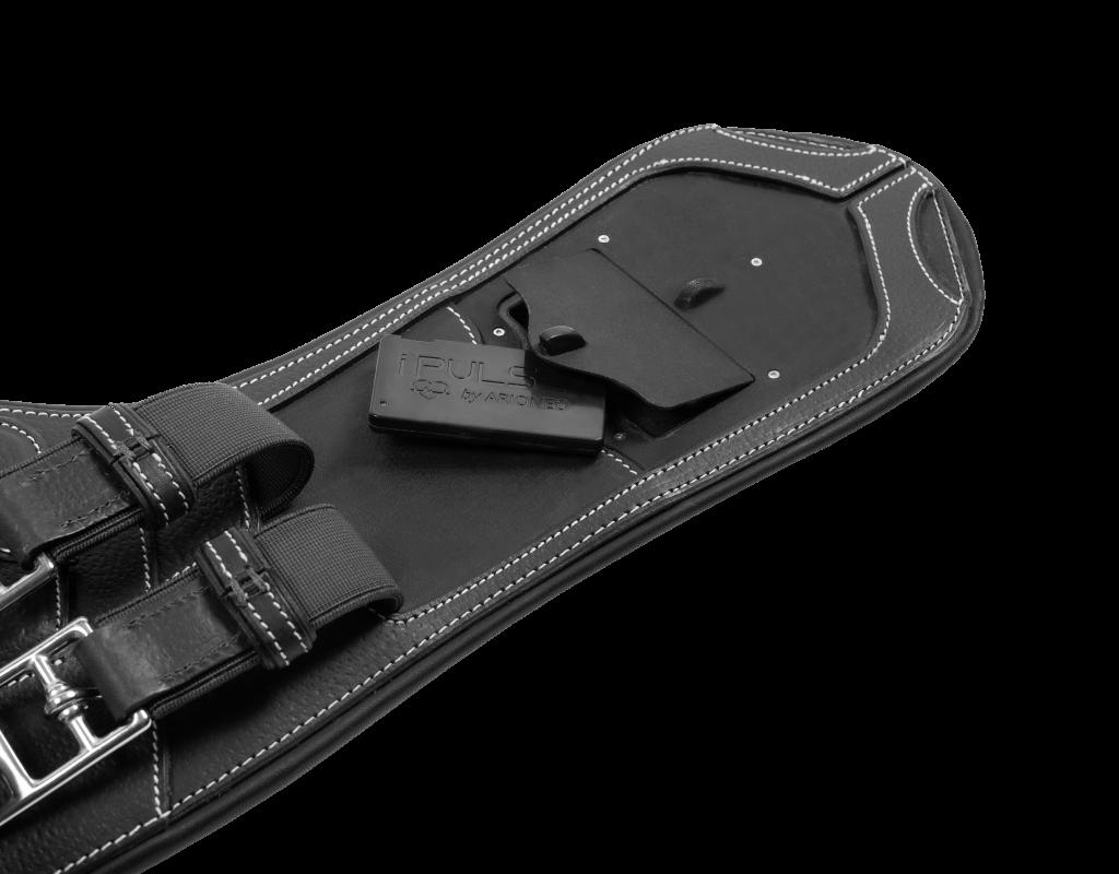 iPULSE box compartment CWD