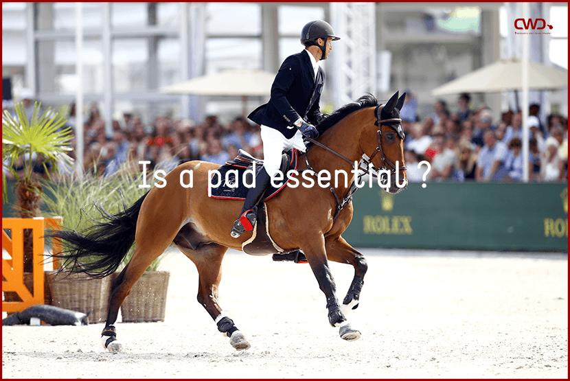 pad equestrian sports horse riding
