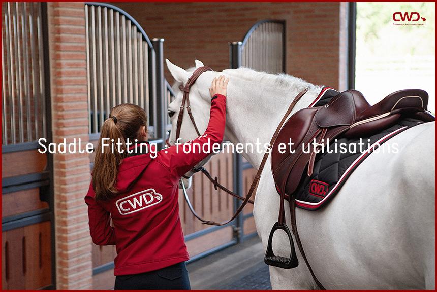 Saddle fitting : fondements et utilisations