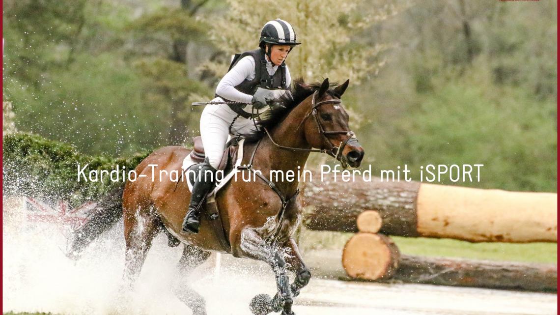 Kardio-Training für mein Pferd mit iSPORT