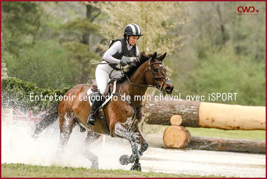 Entretenir le cardio de mon cheval avec iSPORT